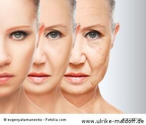 Hautregeneration