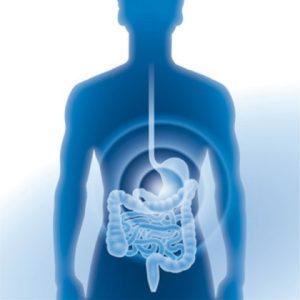Darmsanierung - Mikrobiom - ist eine wichtige Behandlung für eine schöne Haut.