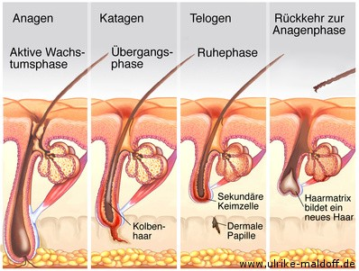 Heilmittel für vaginale bakterielle Infektionen